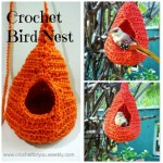 Crochet Bird Nest ~ Erangi Udeshika - Crochet For You