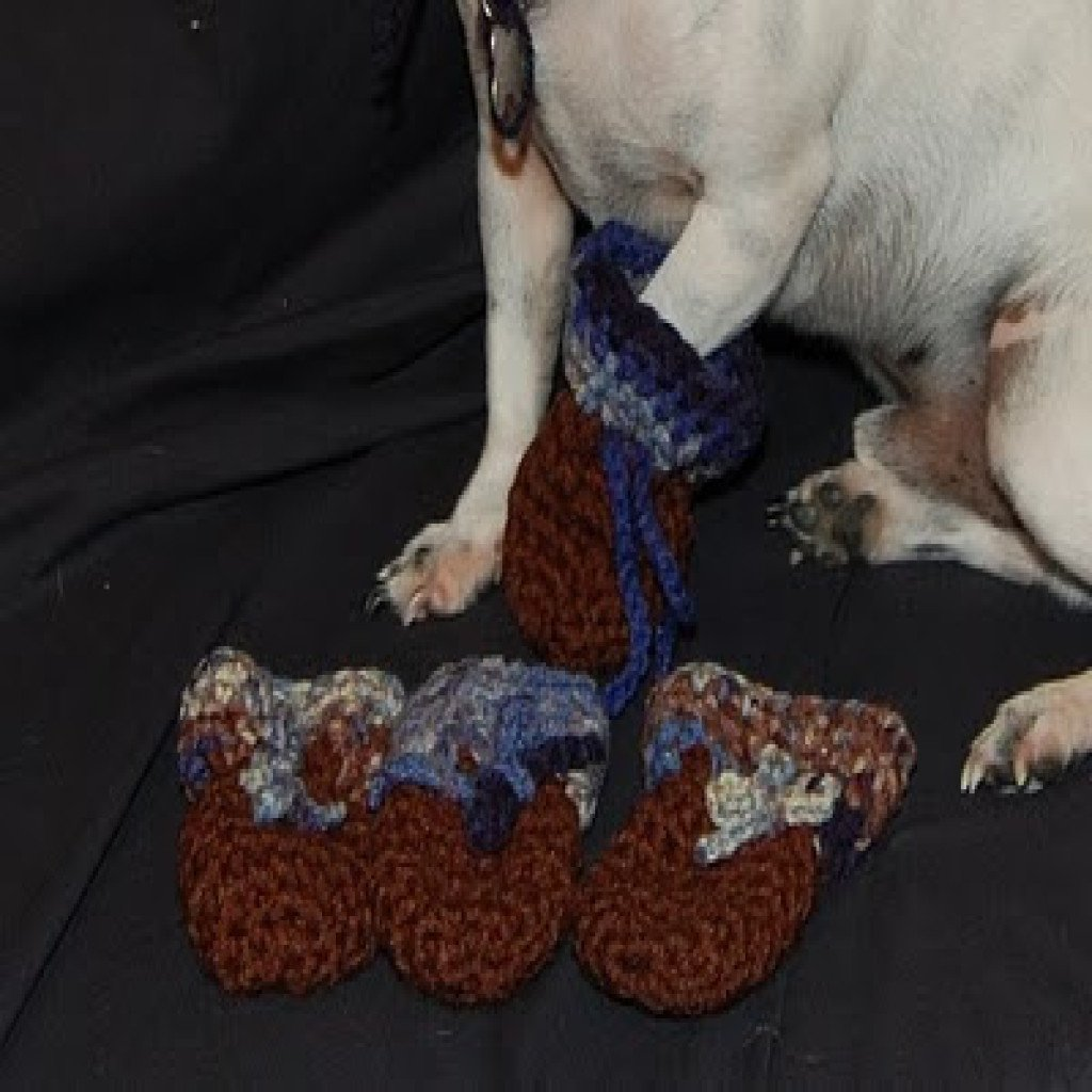 Dog Bootie for Those Little Paws ~ Sara Sach - Posh Pooch Designs