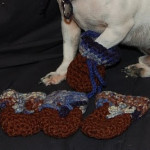 Dog Bootie for Those Little Paws by Sara Sach of Posh Pooch Designs