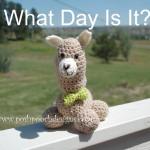 Humphrey the Camel Stuffie - Camel Amigurumi ~ Sara Sach - Posh Pooch Designs