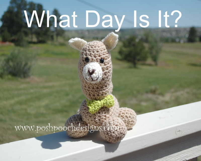Humphrey the Camel Stuffie - Camel Amigurumi by Sara Sach of Posh Pooch Designs
