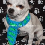Dog Neck Tie ~ Sara Sach - Posh Pooch Designs