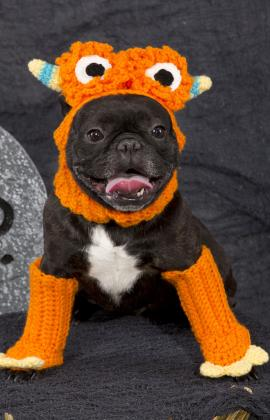 Dog Monster Costume by Linda Cyr for Red Heart