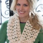 Infinite Shells Cowl ~ Wendy Lewis - Red Heart