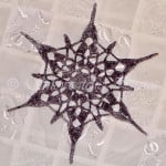 Twisted Space Snowflake ~ Snowcatcher