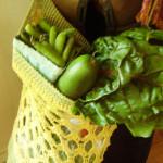 Metaphor Market Bag by Sara Delaney of ChickenBetty's Pattern Coop