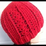 Botanic Ridge – Adult Hat ~ Cats-Rockin-Crochet