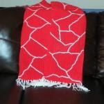 Beginner Crochet Shawl ~ Wonder Wool