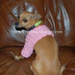 Small Dog Shrug ~ Sara Sach - Posh Pooch Designs