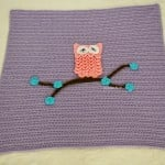 Easy Baby Blanket with Optional Owl Applique ~ Free Crochet Patterns and Designs by Lisa Auch