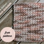 Clean Those Dishes - 9-inch Dishcloth ~ Oombawka Design