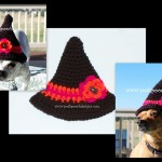 Little Witch Hat ~ Sara Sach - Posh Pooch Designs