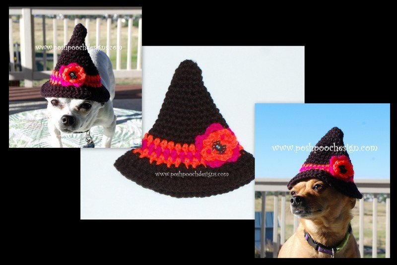 Little Witch Hat by Sara Sach of Posh Pooch Designs