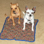 Dog Blanket ~ Basket Weave ~ Sara Sach - Posh Pooch Designs