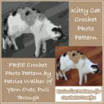 Kitty Cat Crochet Photo Pattern by Patrice Walker of Yarn Over, Pull Through for CrochetN'Crafts