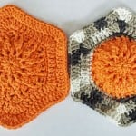 Fall Burst Dishcloth by DragonFlyMomof2 Designs