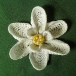 Magnolia Bloom by Crochet is the Way