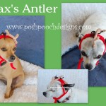 Max's Antler From The Grinch – Dog or Cat Hat by Sara Sach of Posh Pooch Designs