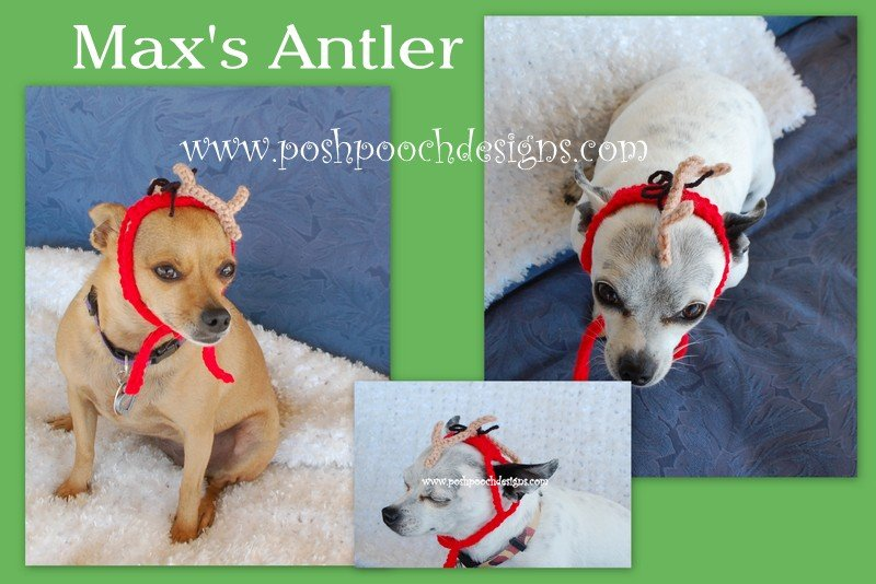 Max's Antler From The Grinch - Dog or Cat Hat by Sara Sach of Posh Pooch Designs