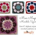 Mini Magic Mandala Square ~ Moogly