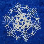 Science Mission Snowflake ~ Snowcatcher