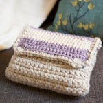 Crocheted Case ~ grannysquaredontcare