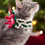 Holiday Cat Collar ~ Brenda K.B. Anderson - Red Heart