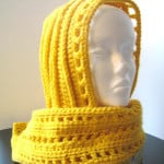 Aesthetic Hooded Scarf ~ Crochet Dreamz