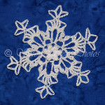 Wind River Snowflake ~ Snowcatcher