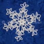 Wind River Snowflake ~ Snowcatcher