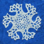 Snowflake Intrepid ~ Snowcatcher