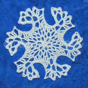 Snowflake Intrepid ~ Snowcatcher