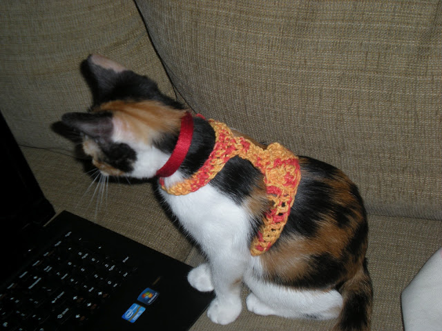 Kitty Harness ~ NyanPon.com