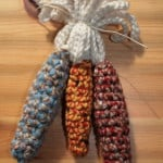 Indian Corn ~ Alicia Kachmar - Create!
