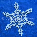 10.11.12.13.14 Snowflake ~ Snowcatcher
