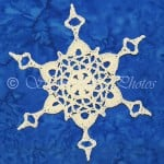 Roseburg Snowflake ~ Snowcatcher
