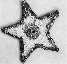 Glitter Star Ornament ~ Free Vintage Crochet