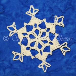 Shady Cove Snowflake ~ Snowcatcher