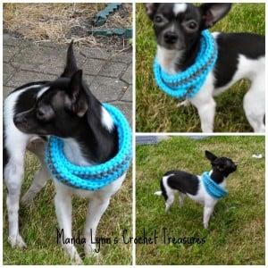 Infinity Scarf for Pup ~ Manda Proell - MandaLynn's Crochet Treasures