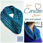Coraline in Morocco One Skein Cowl ~ Simply Collectible