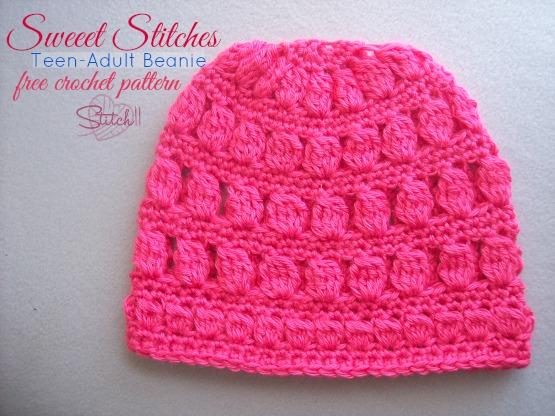Sweet Stitches - Teen/Adult Beanie ~ FREE Crochet Pattern
