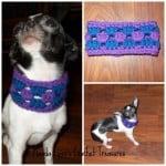 Granny Cowl 4 Pup ~ Manda Proell – MandaLynn's Crochet Treasures
