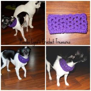 Lacy Cowl for Pup ~ Manda Proell - MandaLynn's Crochet Treasures