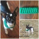 Ribbed Cowl for Pup ~ Manda Proell - MandaLynn's Crochet Treasures