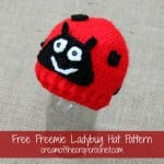 Preemie Ladybug Hat ~ Cream Of The Crop Crochet