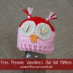 Preemie Valentine's Owl Hat ~ Cream Of The Crop Crochet