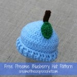 Preemie Blueberry Hat ~ Cream Of The Crop Crochet