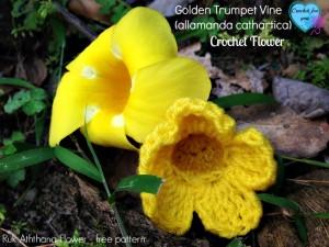 Golden Trumpet Vine ~ Erangi Udeshika - Crochet For You