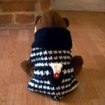 Haute Puppy Sweater ~ Crochet Parfait
