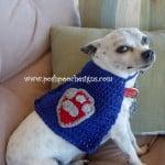 Super hero Dog Cape ~ Sara Sach – Posh Pooch Designs
